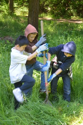 John Muir Elementary School - Environmental Stewardship