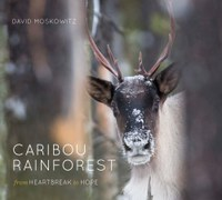 Caribou Rainforest Cover