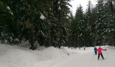 Pierce County Juvenile Court - XC Skiing