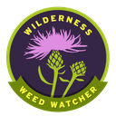 Wilderness Weed Watcher