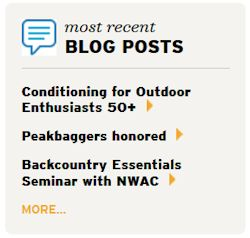 Most Recent Blog Posts
